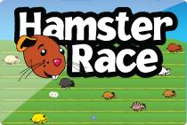 hamster race